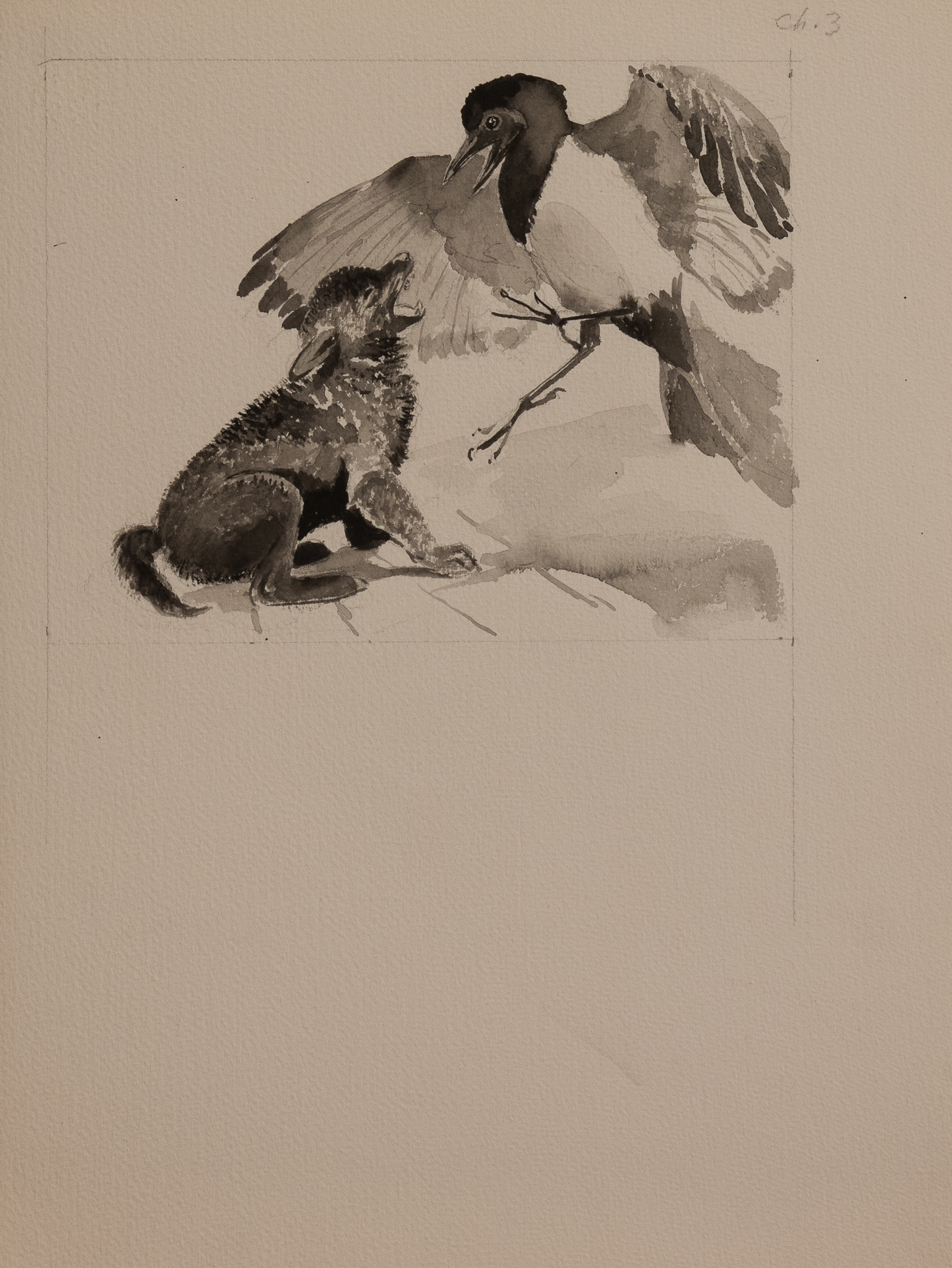 bird and cub (1 of 1)